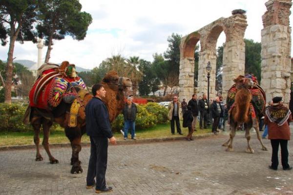 7-kamelenfestival-turkije86E94189-4501-E478-3BE7-F5DCE4C96DF9.jpg