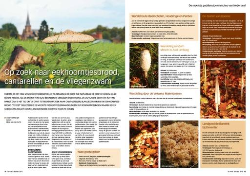Eekhoortjesbrood en meer